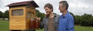 Flow Hive – din stup �n borcan, o inven�ie de milioane (la propriu)